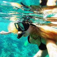 7.5 Photos that will make you want to snorkel at the Great Barrier Reef