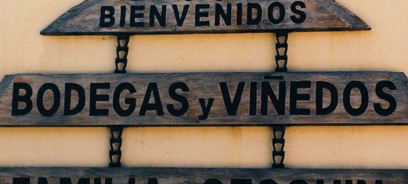 Vineyard Hopping in Mendoza